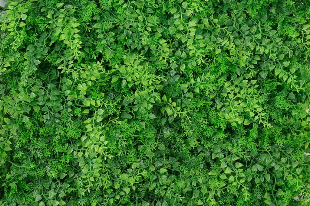 muro verde para decorar